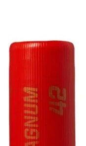 Norma Magnum 12/70 US2+US4 42g